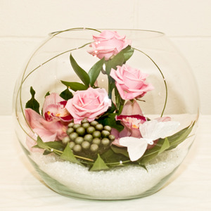 arrangement in fish bowl
