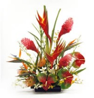 tropical floral design